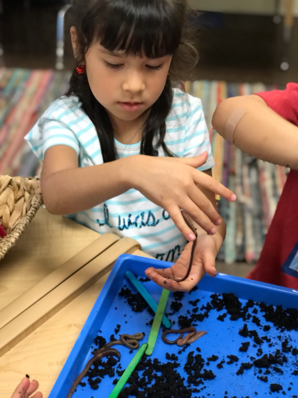 kids and earthworms
